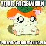 Hamtaro Meme | YOUR FACE WHEN YOU PRETEND YOU DID NOTHING WRONG | image tagged in memes,hamtaro | made w/ Imgflip meme maker