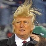 Donald Trumph hair meme