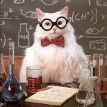 Science Cat Good Day meme