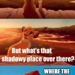 THIS IS ALL OURS SON WHERE THE DENTIST HIDES | image tagged in memes,simba shadowy place | made w/ Imgflip meme maker