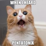 scared cat | WHEN I HEARD PENTATONIX | image tagged in scared cat,music,amazing,pentatonix | made w/ Imgflip meme maker