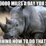 rhino | 1000000 MILES A DAY YOU SAY? RHINO HOW TO DO THAT! | image tagged in rhino | made w/ Imgflip meme maker