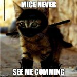 Ninja Cat | MICE NEVER SEE ME COMMING | image tagged in ninja cat | made w/ Imgflip meme maker