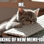 Today's day is really tiring.  | ME, THINKING OF NEW MEME IDEAS. | image tagged in bored keyboard cat | made w/ Imgflip meme maker