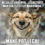 Stoner Dog | MEGALIZE HARONYA... LEGASTRATE MANORA... LEGITIZE MARRIWON... MAKE POT LEGAL | image tagged in memes,stoner dog | made w/ Imgflip meme maker