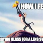 lion king | HOW I FEEL CARRYING GLASS FOR A LENS SWAP | image tagged in lion king | made w/ Imgflip meme maker