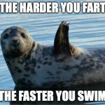 Seal | ~ THE HARDER YOU FART ~ ~ THE FASTER YOU SWIM ~ | image tagged in seal | made w/ Imgflip meme maker