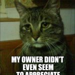 Depressed Cat Meme | SIGH, I DUNNO MAN MY OWNER DIDN'T EVEN SEEM TO APPRECIATE THE DEAD BIRD | image tagged in memes,depressed cat | made w/ Imgflip meme maker