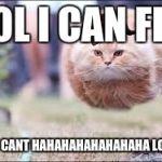 rw10i flying cat ball meme generator imgflip