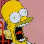Homer Screaming meme