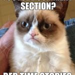 Grumpy Cat Meme | YOUTUBE COMMENT SECTION? BED TIME STORIES | image tagged in memes,grumpy cat | made w/ Imgflip meme maker
