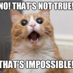 scared cat | NO! THAT'S NOT TRUE! THAT'S IMPOSSIBLE! | image tagged in scared cat | made w/ Imgflip meme maker
