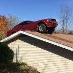 Mustang on a roof meme