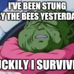 Super Kami Guru Allows This Meme | I'VE BEEN STUNG BY THE BEES YESTERDAY LUCKILY I SURVIVED | image tagged in memes,super kami guru allows this | made w/ Imgflip meme maker