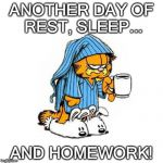Sigh! | ANOTHER DAY OF REST, SLEEP... AND HOMEWORK! | image tagged in meow,garfield | made w/ Imgflip meme maker