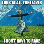 Sound of Music | LOOK AT ALL THE LEAVES I DON'T HAVE TO RAKE | image tagged in sound of music | made w/ Imgflip meme maker
