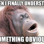 Monkey OOH Meme | WHEN I FINALLY UNDERSTAND SOMETHING OBVIOUS | image tagged in memes,monkey ooh | made w/ Imgflip meme maker