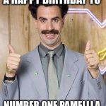 borat | A HAPPY BIRTHDAY TO NUMBER ONE PAMELLLA | image tagged in borat | made w/ Imgflip meme maker
