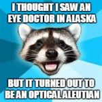 raccoon | I THOUGHT I SAW AN EYE DOCTOR IN ALASKA BUT IT TURNED OUT TO BE AN OPTICAL ALEUTIAN | image tagged in raccoon | made w/ Imgflip meme maker