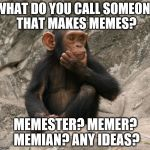 "Let the argument commence. (I'm going for ""memester"" but feel free...) 