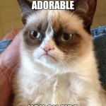 Grumpy Cat Meme | YOU KNOW WHAT'S ADORABLE YOU ON FIRE | image tagged in memes,grumpy cat | made w/ Imgflip meme maker