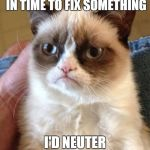"Grumpy Cat goes back to ""fix"" the past 