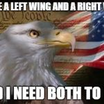 American Eagle | I HAVE A LEFT WING AND A RIGHT WING, AND I NEED BOTH TO FLY. | image tagged in american eagle | made w/ Imgflip meme maker