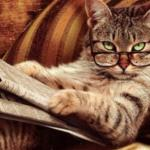 Cat reading news meme