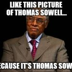 Thomas Sowell | LIKE THIS PICTURE OF THOMAS SOWELL... ...BECAUSE IT'S THOMAS SOWELL. | image tagged in thomas sowell | made w/ Imgflip meme maker