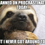 Motivational Sloth | I PLANNED ON PROCRASTINATING TODAY... BUT I NEVER GOT AROUND TO IT. | image tagged in motivational sloth | made w/ Imgflip meme maker