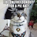 Spangles Meme | I BE ON THE LOOKOUT FOR A PIE RAT! | image tagged in memes,spangles | made w/ Imgflip meme maker