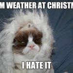 Cold grumpy cat  | WARM WEATHER AT CHRISTMAS? I HATE IT | image tagged in cold grumpy cat  | made w/ Imgflip meme maker