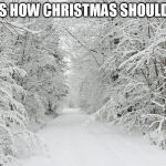 Snowy forest | THIS IS HOW CHRISTMAS SHOULD LOOK | image tagged in snowy forest | made w/ Imgflip meme maker