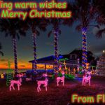 Florida Christmas | Sending warm wishes for a Merry Christmas From Florida! | image tagged in florida christmas | made w/ Imgflip meme maker
