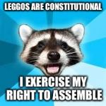 raccoon | LEGGOS ARE CONSTITUTIONAL I EXERCISE MY RIGHT TO ASSEMBLE | image tagged in raccoon,AdviceAnimals | made w/ Imgflip meme maker