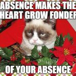 Grumpy Cat Mistletoe Meme | ABSENCE MAKES THE HEART GROW FONDER OF YOUR ABSENCE | image tagged in memes,grumpy cat mistletoe,grumpy cat | made w/ Imgflip meme maker