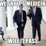 Barack And Kumar 2013 Meme | IF WE SAY IT'S MEDICINAL WILL IT PASS | image tagged in memes,barack and kumar 2013 | made w/ Imgflip meme maker