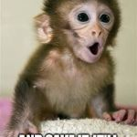 Surprised baby monkey | SO YOU MEAN IF WE DON'T SPEND OUR MONEY AND SAVE IT, IT'LL BUILD UP OVER TIME? | image tagged in surprised baby monkey | made w/ Imgflip meme maker