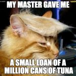 donald trump cat | MY MASTER GAVE ME A SMALL LOAN OF A MILLION CANS OF TUNA | image tagged in donald trump cat | made w/ Imgflip meme maker