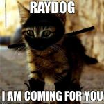 Raydog has met his match in a final battle for the food bowl  | RAYDOG  I AM COMING FOR YOU | image tagged in ninja cat | made w/ Imgflip meme maker