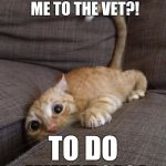 You WHAT?! | YOU'RE TAKING ME TO THE VET?! TO DO WHAT?!?! | image tagged in castration,cats,neuter,veterenarian,pets,funny | made w/ Imgflip meme maker