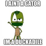 I Am Not A Gator Im A X Meme | I AINT A GATOR IM A DUCKADILE | image tagged in memes,i am not a gator im a x | made w/ Imgflip meme maker