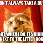 Surprise, human! | I DON'T ALWAYS TAKE A DUMP BUT WHEN I DO, ITS RIGHT NEXT TO THE LITTER BOX. | image tagged in memes,suspicious cat | made w/ Imgflip meme maker