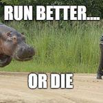 Hippo chasing man Meme Generator - Imgflip