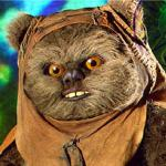 ewok star wars  meme