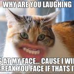 ytepw meow cat meme generator imgflip,Meow Meme