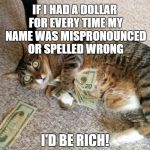 money cat | IF I HAD A DOLLAR FOR EVERY TIME MY NAME WAS MISPRONOUNCED OR SPELLED WRONG I'D BE RICH! | image tagged in money cat | made w/ Imgflip meme maker