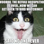 excited cat | WOOHOO, THE REFUGE OCCUPATION IS OVER...NOW WE CAN GET BACK TO BIRD WATCHING!! SAID NO ONE...EVER | image tagged in excited cat | made w/ Imgflip meme maker
