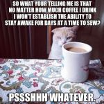 Cat Doesn't Like this Coffee | SO WHAT YOUR TELLING ME IS THAT NO MATTER HOW MUCH COFFEE I DRINK I WON'T ESTABLISH THE ABILITY TO STAY AWAKE FOR DAYS AT A TIME TO SEW? PSS | made w/ Imgflip meme maker
