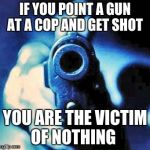gun in face | IF YOU POINT A GUN AT A COP AND GET SHOT YOU ARE THE VICTIM OF NOTHING | image tagged in gun in face | made w/ Imgflip meme maker